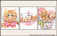 Colourbelle Package-118