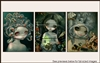 Jasmine Becket-Griffith Package 167