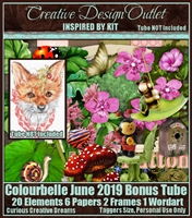 ScrapCCD_IB-Colourbelle-June2019-bt