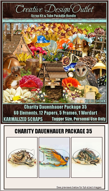 ScrapKarmalized_CharityDauenhauer-Package-35
