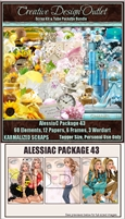 ScrapKarmalized_AlessiaC-Package-43