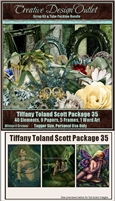 ScrapWDD_TiffanyToland-Scott-Package-35