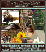 ScrapWPS_IB-HowardRobinson-November2020-bt
