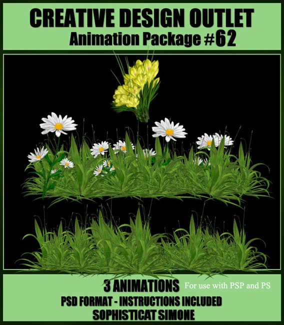 SophisticatSimoneAnimation-Package-62
