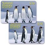 Lenticular gift card with emperor penguins dancing in the Antarctic snow, flip