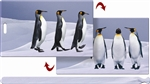 Lenticular Luggage Tag Mailer with 3D Penguin in Arctic Dancing