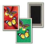 3D Magnet in Acrylic Frame with large yellow butterflies, background switches from green to red, flip