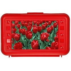 Lenticular pencil box with custom design, red hard plastic, dozen red pungent roses growing in a spring field, depth