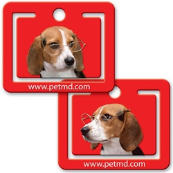 Lenticular paper clip with Beagle puppy dog wearing glasses tilts it head and floppy ears side to side, flip