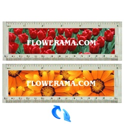 Lenticular acrylic ruler with bright red pungent bed of tulips and a close up view of golden glowing marigolds, flip