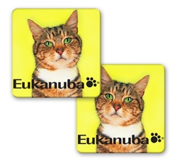 Lenticular sticker with custom design, Eukanuba cat food, kitten tilts head side to side with green eyes, flip