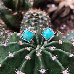 Turquoise Diamond Dot Earrings