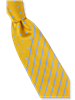 Steven Land Fancy Yellow Tie