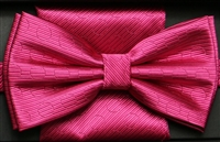 Steven Land Big Knot  Fancy Fuchsia Bowties