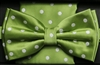 Steven Land Big Knot Fancy Green Bowties