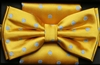 Steven Land Big Knot Fancy Yellow Bowties