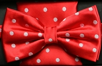 Steven Land Big Knot Fancy Red Bowties