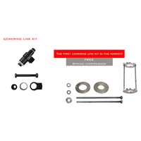 2017 - 2020 Suzuki GSX250R Lowering Link w/ spring tool included