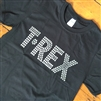 T-Rex T-Shirt - Retro, 1970's, Dinosaur, Tyrannosaurus, All Sizes & Various Colours