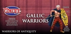 Victrix Miniatures - Ancient Gallic Warriors