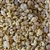 Wholesale Frankincense Select Incense Resin - 5 LB.