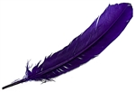 "Wholesale Turkey Dyed Purple Feather 11-13""L"