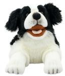 Border Collie Dog Puppet