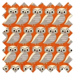 S'More Love Owls 37072-13 Campfire from Moda