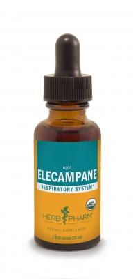 Elecampane: Dropper Bottle / Organic Alcoholic Extract: 1 Fluid Ounce