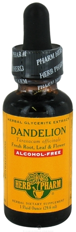Dandelion Glycerite: Dropper Bottle / Organic Non-Alcoholic Extract: 1 Fluid Ounce