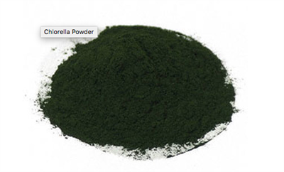 Chlorella Powder: Bulk Powder