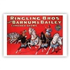 Hercules and Ringling Bros. and Barnum & Bailey Poster