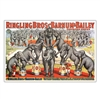 Ringling Elephants Poster