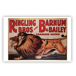 Ringling Bros. and Barnum & Bailey Lion Poster