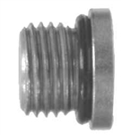 O-Ring Hollow Hex Head Plug