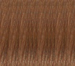 Hair Extension Sample Number 12 Light Golden Brown