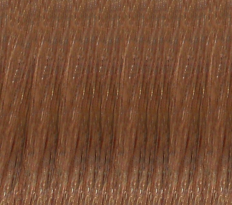 Hair Extension Sample Number 12 Light Golden Brown