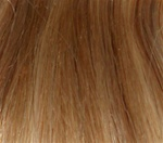 Hair Extension Sample Honey Blond-Platinum Blond mix