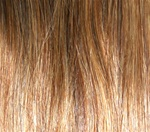 Hair Extension Sample Chestnut Brown-Honey Blond MIX