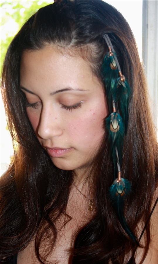 Feather Extensions Clip Ins