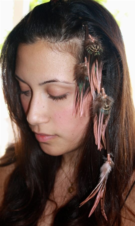 Feather Extensions Clip Ons