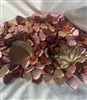 Leaf Box with Chocolate Leaves