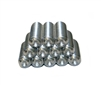 Cupped Tip Stainless Steel Set Screws for the SSRA1 Standing Seam Roof Anchor - 12 pack