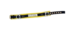 Positioning Belt with Back Pad and 2 side D Rings- 2011 - 3M - Fall Protection