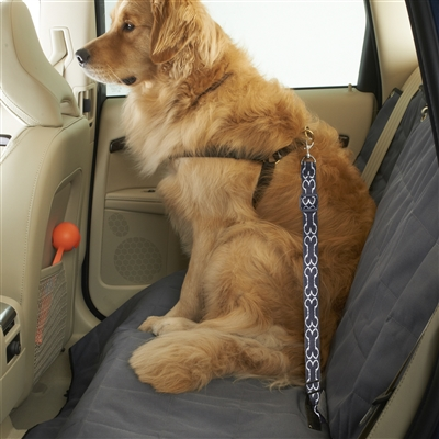 High Road Wag 'n Ride Dog Seat Belt Tether for Cars