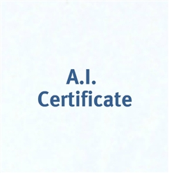Back To Basics Certificate