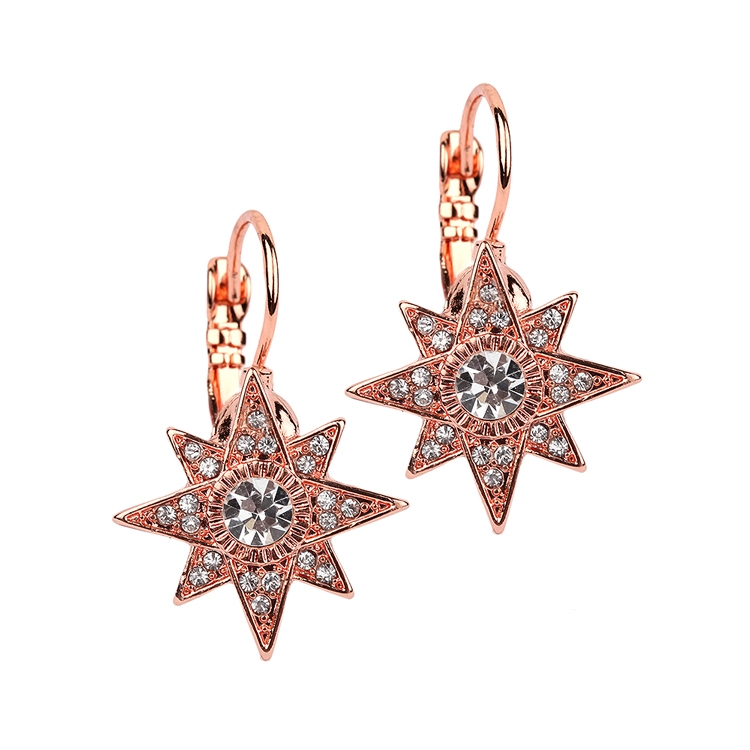 Celestial Stars Prom or Bridesmaid Rose Gold Euro Wire Earrings<br>4346E-RG