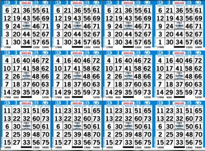 12 ON Bingo Paper