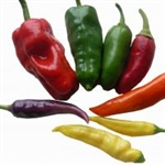 Mixed Hot Chillies