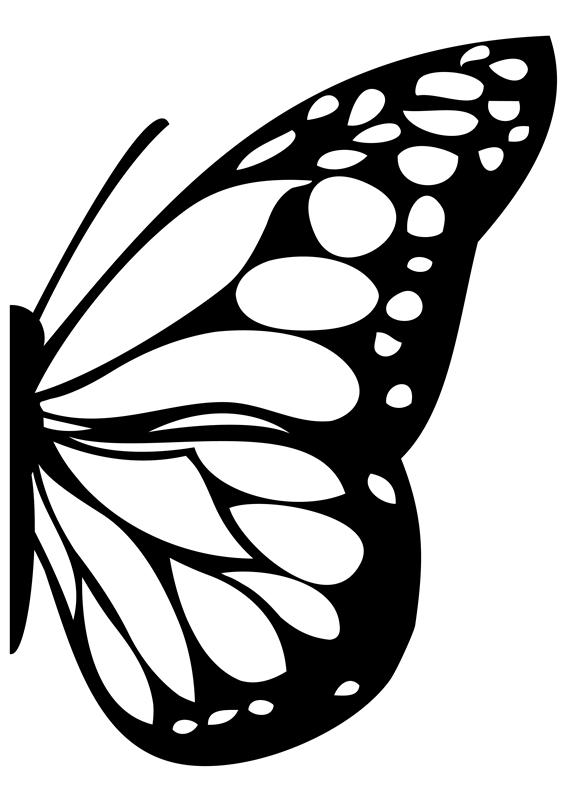 Butterfly Wing Glass Decal